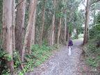 Coastal Trail close to Palomarin Trailhead
