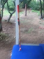 homemade survival walking stick