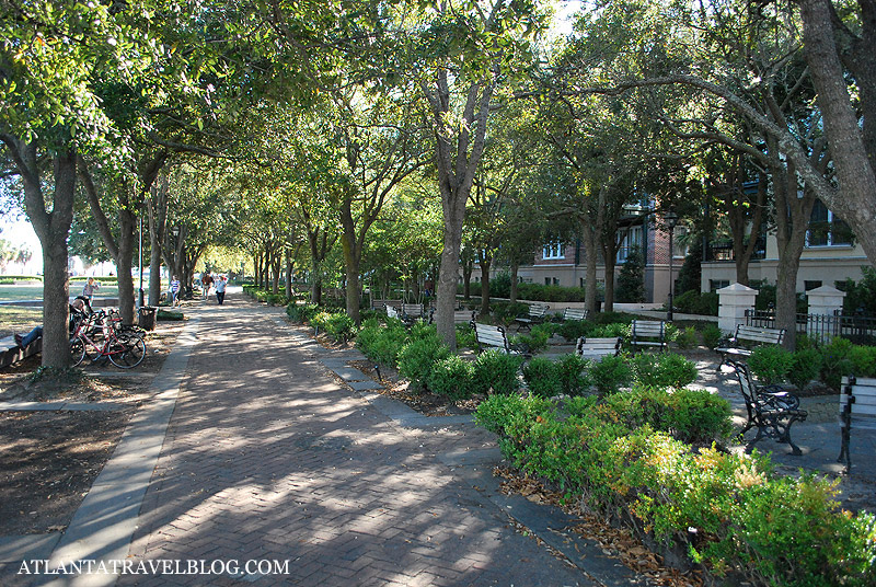 What to do in Charleston, SC