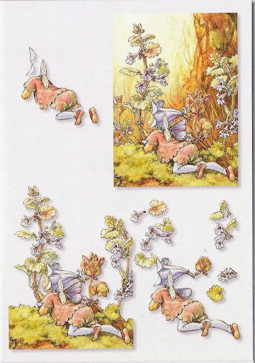 3D Mini 01 - Flower Fairies - 07.jpg