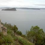 Lion Island in Broken Bay (28484)