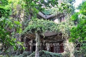 Ngôi nhà phong thủy - Nguyễn Ngọc Ngạn