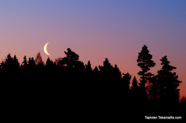 aamuyön kuun sirppi