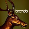 Brando Digital Advertising Agency