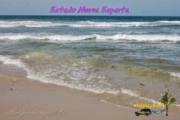 Playa Lagunamar NE023, estado Nueva Esparta, Margarita