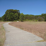 Walking through Green Point Reserve (402916)