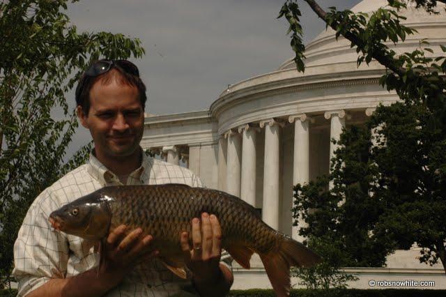 Potomac carp