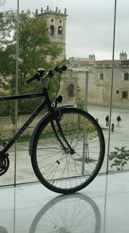 Tanta bici cono peatón