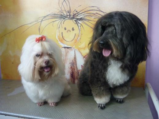 Sidy & Manny
