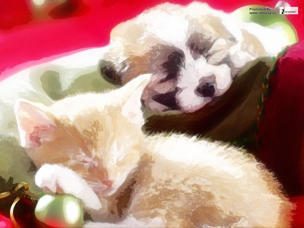Christmas kittens and puppies cute christmas kittens and