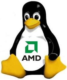 El rendimiento gráfico de AMD en cuanto a OpenGL en Linux esta muy por debajo de NVIDIA