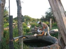 cooperación, desarrollo rural, agrícola