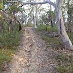 Trail near Hominy creek (160399)