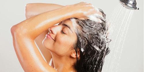 sampo untuk rambut kering