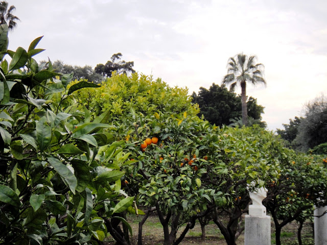 parc oranges menton