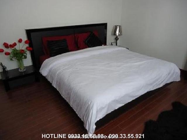 Cho thuê căn hộ Belleza Quận 7 giá rẻ