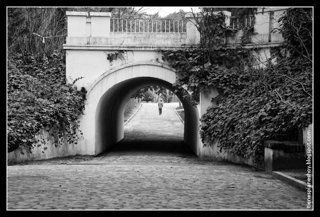 jardín Quinta de los Molinos