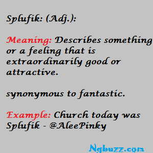 Meaning of Splufik