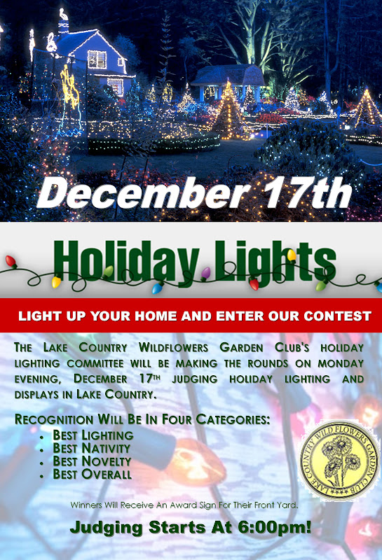 https://lh5.googleusercontent.com/-tFxdT2bbz5E/UMA-UmrWpjI/AAAAAAAAPzg/9l11plEamDQ/s800/Holiday%20Lights%20Contest%202012.jpg