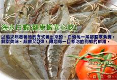 活動商品-海水白蝦特惠組
