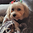 Joni Kim avatar image