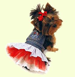 Одежда для собак - Одежда для йорка 6b8da76a812a9