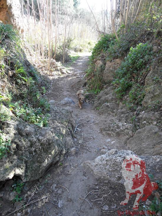 Excursión a la Cascada del Salto de la Novia.