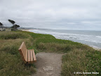 One of several benches along the coastline