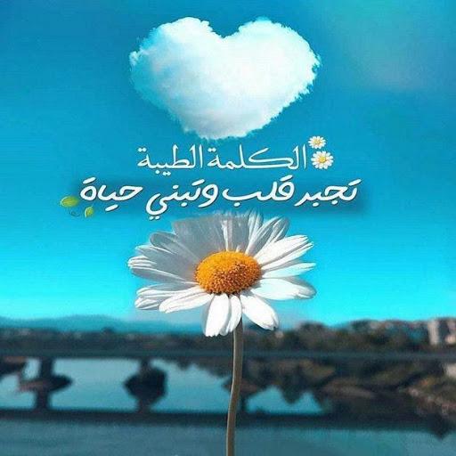 acc.elgohry.egypt@gmail.com