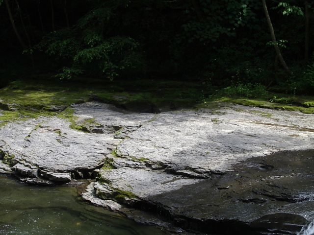 rock with dry and wet spots showing the layered structure