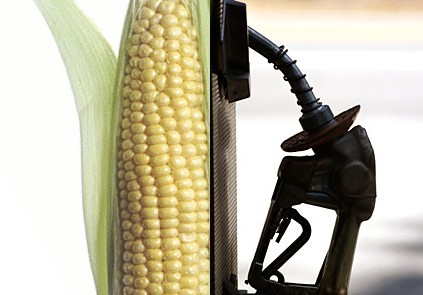 Biofuels Does Not Mean Just Corn Ethanol Any More Image