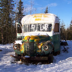 Magic Bus, Stampede Trail's profile photo