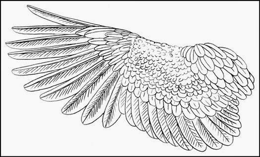 The Helpful Art Teacher: On painting birds