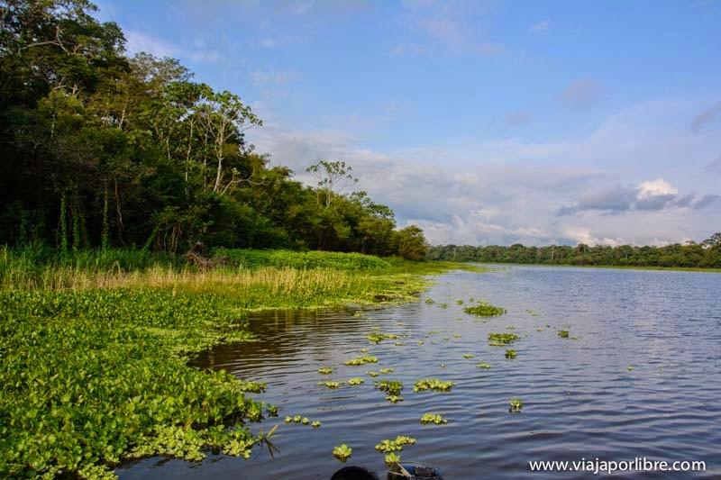 El río Amazonas, Perú