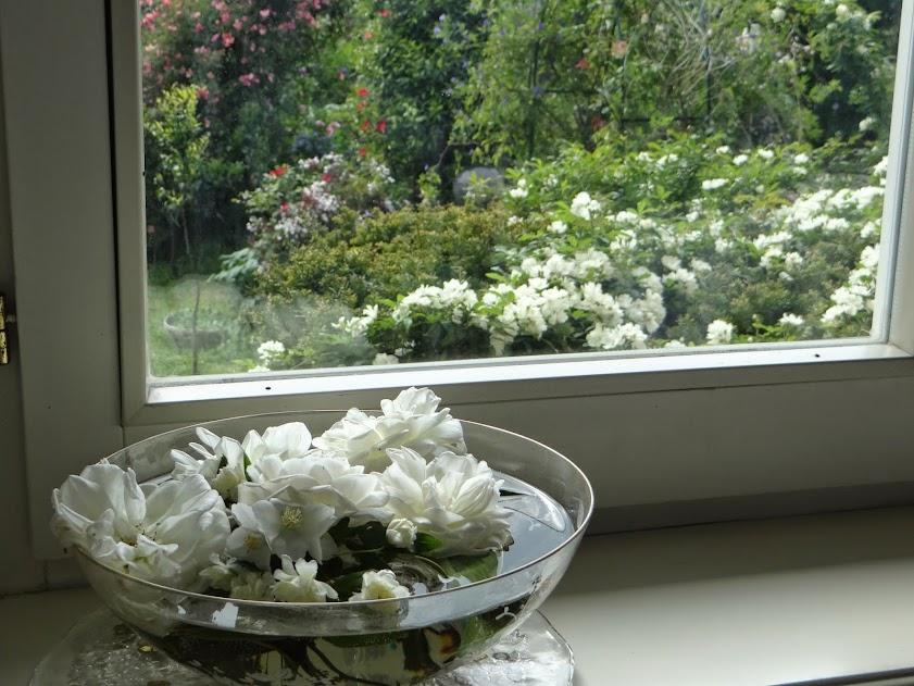 Idee per apparecchiare e decorare la tavola in giardino for Decorare un piccolo giardino