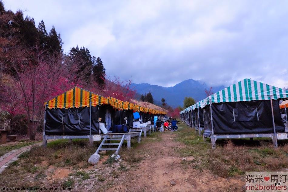 武陵農場空中帳篷