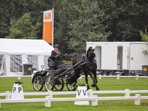 Liesbeth van der Wal