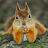 joeb10 avatar image