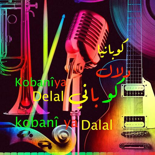 Farhan Kobani