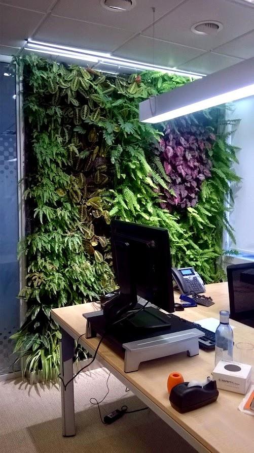 jardin vertical en oficina