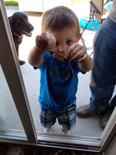 """Hunter showing me his """"wormy worm"""""""