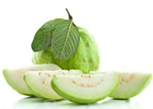 Trái ổi là một loại quả bổ dưỡng, là nguồn cung cấp sinh tố A và C