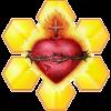 LogoGirasolCristiano100x100
