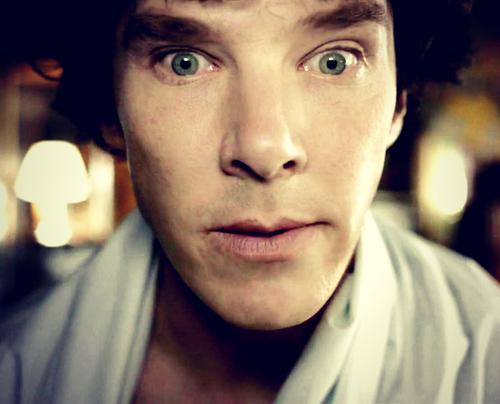 https://lh5.googleusercontent.com/-tyHRkC_lk-c/UIHB26W7xiI/AAAAAAAAAcM/VjeSAqcE4yA/s500/Sherlock+382.jpg