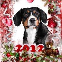 01 января 2012