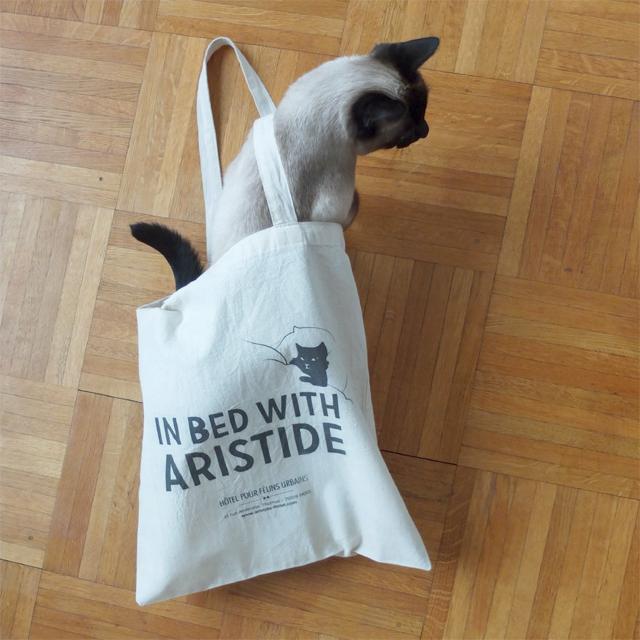 audrey jeanne blog aristide h tel pour chats paris. Black Bedroom Furniture Sets. Home Design Ideas
