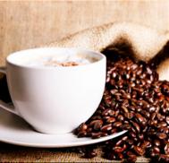 caffeine poison to dogs