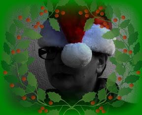 Die Weihnachtsbloggerin