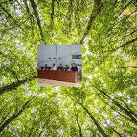 Zainul Abdul Roid