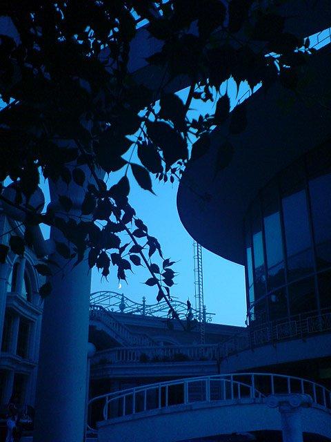 Сон в синюю ночь